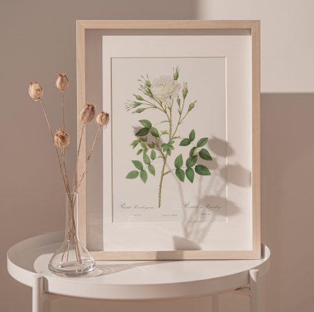 róża róże vintage kwiaty prezent urodziny imieniny