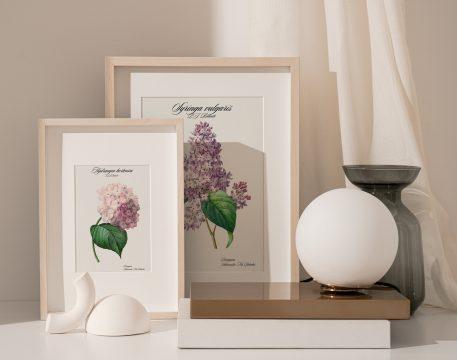 kwiaty w domu kwiaty na prezent plakaty